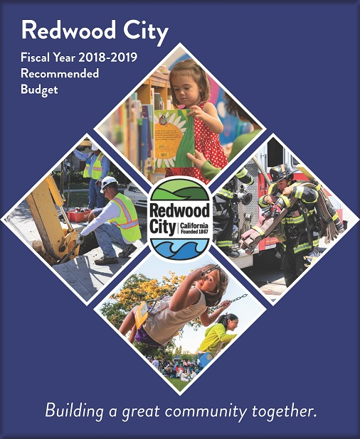 Recmd Budget cover 18-19