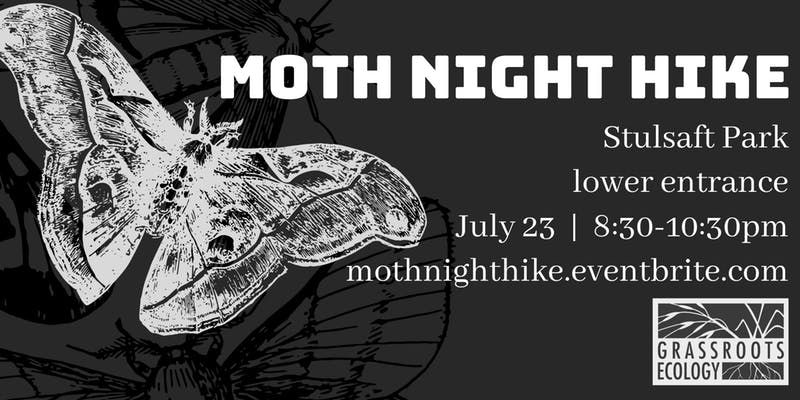 moth night hike