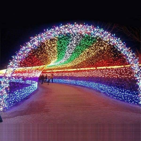 Holiday Light Show City Events Calendar City Of Redwood City