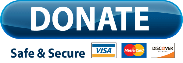 PayPal-Donate-Button-Free-Download-PNG
