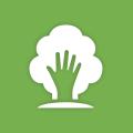 environmental1_green
